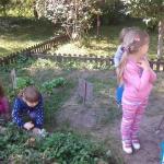w-ogrodzie1